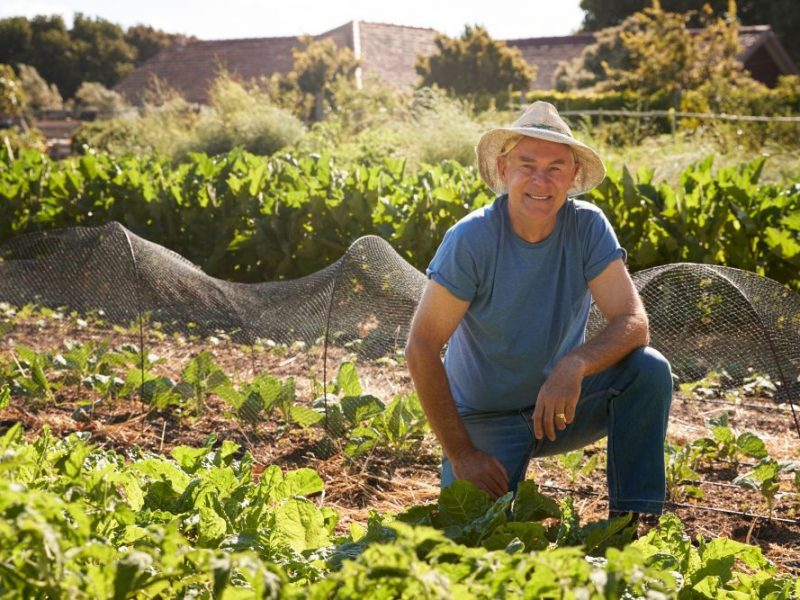 Tips-for-boosting-retirement-savings